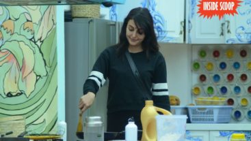 Bigg Boss 9, Day 101: Rishabh flirts with Mandana