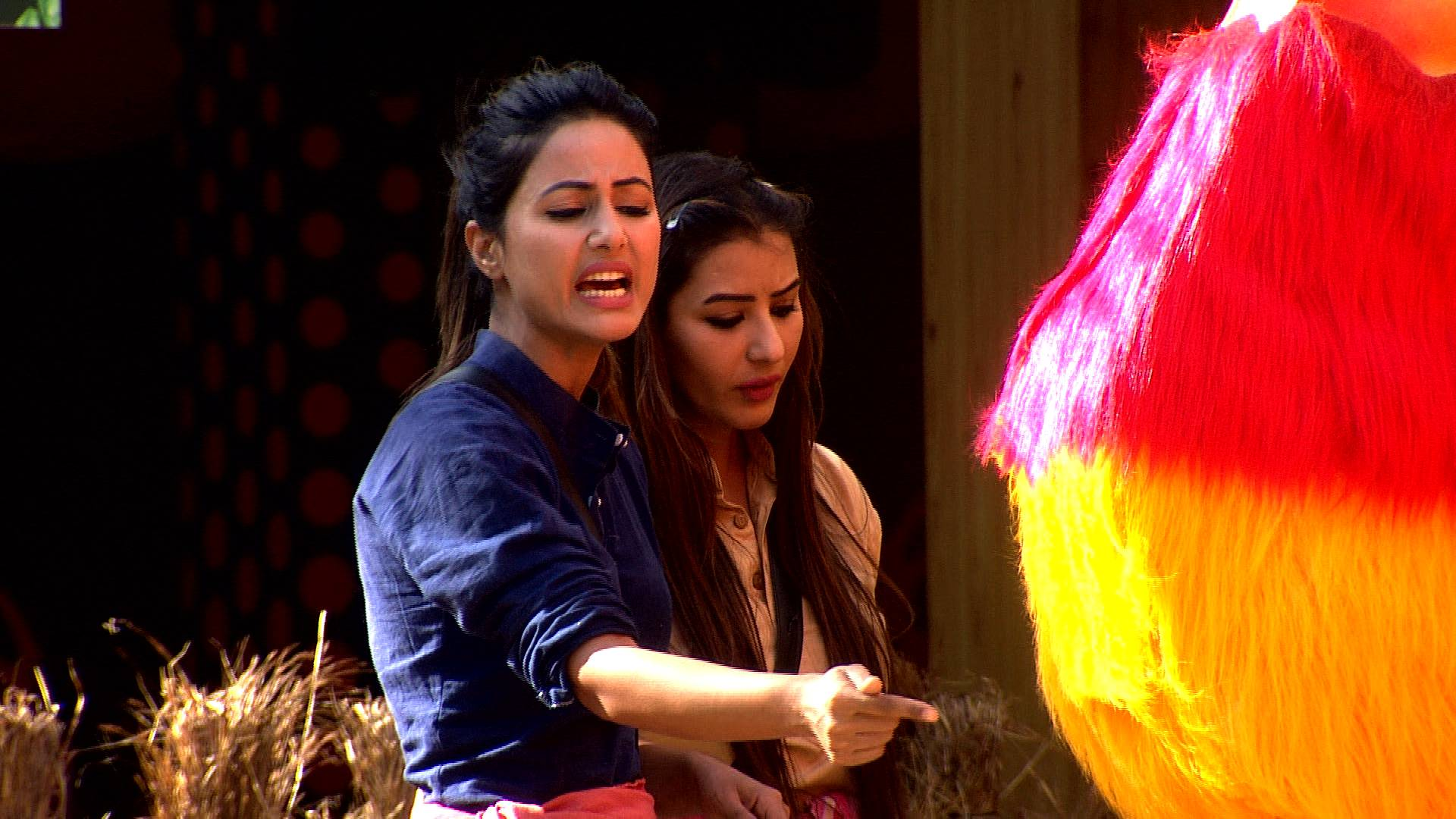 Captaincy fight becomes too big for Vikas and Hina's dignity in the 12th week of Bigg Boss 11!