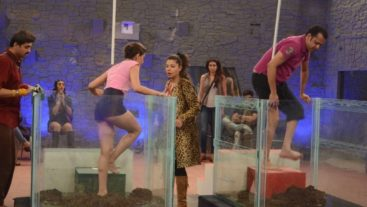 Champions and Challengers Fight to Survive in the Bigg Boss house! Synopsis, Day 3