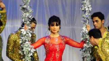 Priyanka Chopra's daredevil act in Colors Screen Awards