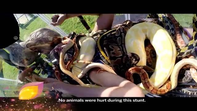 Sana gets bitten by a snake! #KKK