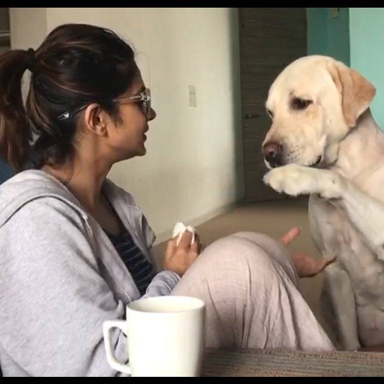 Seven photos of Jennifer Winget with her dog that we love!