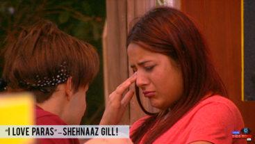 Shehnaaz confesses her love for Paras!