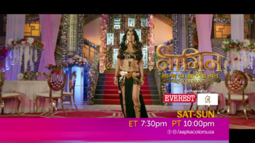 Naagin | Sat-Sun at 7:30 pm ET / 10 pm PT.