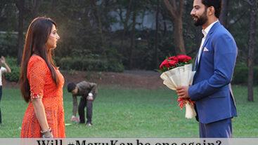 Pinjara: Khubsurti Ka | Will Omkar meet Mayura?